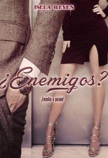 ¿enemigos? de Isela Reyes